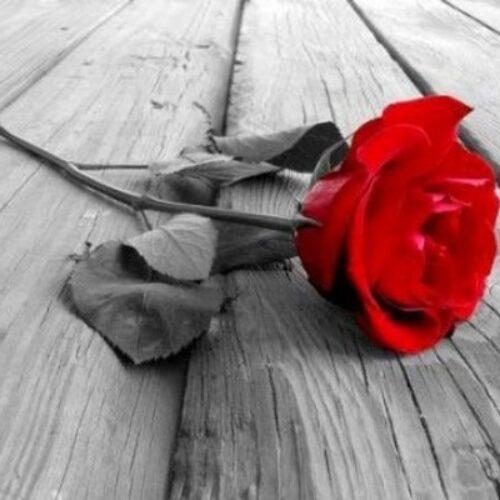 Συλλυπητήριο μήνυμα του Κώστα  Ναλμπάντη για  τον θάνατο του Θανάση Τζίκα