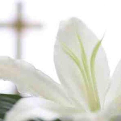 Συλλυπητήριο του Εμπορικού Συλλόγου Αλεξάνδρειας για τον θάνατο του Θανάση Τζίκα
