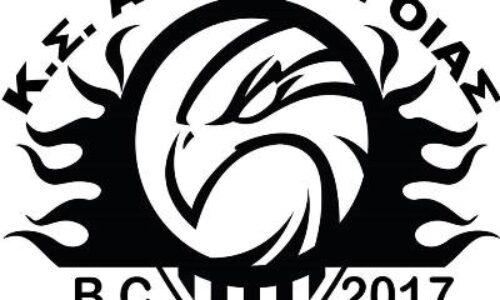 Η ετήσια Γενική Συνέλευση των Αετών Βέροιας