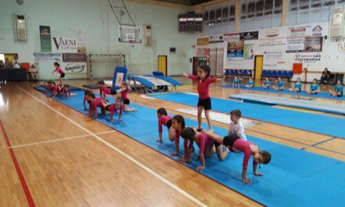 "H ετήσια γιορτή Ενόργανης Γυμναστικής από τον Αθλητικό Σύλλογο Νάουσας ""Ηρακλή"""