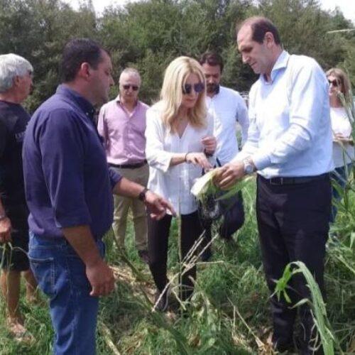 Στις πληγείσες αγροτικές περιοχές Ημαθίας και Χαλκιδικής η Υφυπουργός Αγροτικής Ανάπτυξης   Φωτεινή Αραμπατζή