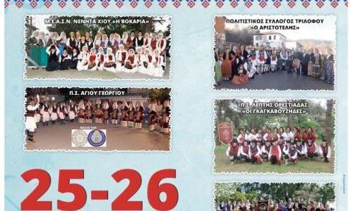 Βέροια: Φεστιβάλ Παραδοσιακών Χορών στην Καλλιθέα