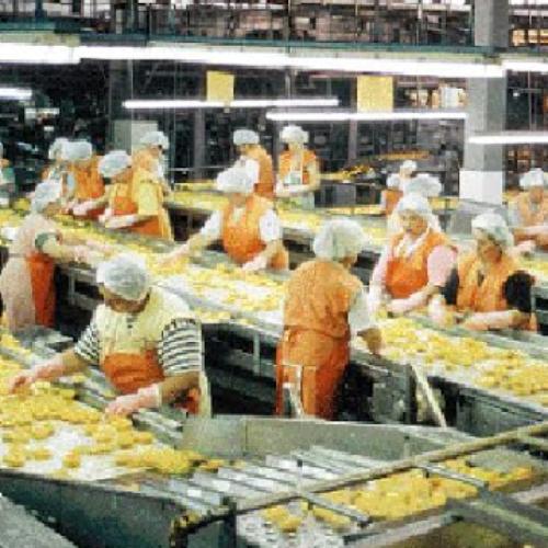 """""""Θέλουν εργάτες δούλους να δουλεύουν με σκυμμένο το κεφάλι για ψίχουλα"""""""