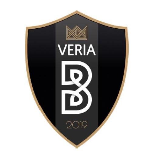 Ποδόσφαιρο: Το ΔΣ της ΠΑΕ Βέροια ΝΠΣ 2019