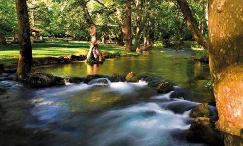 Απαγόρευση αλιείας στους ποταμούς Τριπόταμο & Αράπιτσα  Ημαθίας