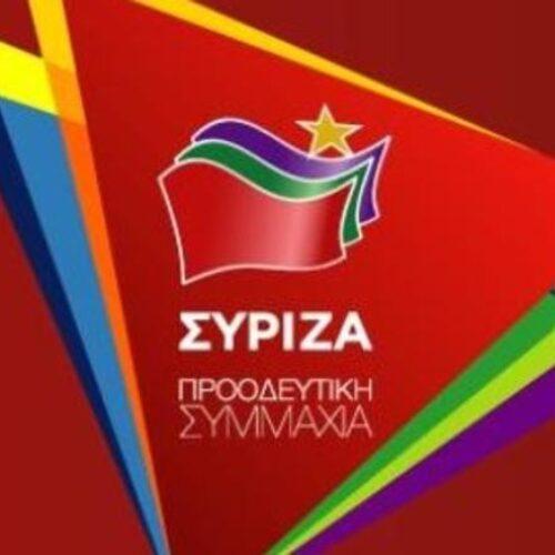 """Φρ. Καρασαρλίδου: Κάλεσμα για συμμετοχή στον """"ΣΥΡΙΖΑ - Προοδευτική Συμμαχία"""""""
