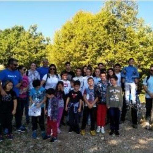 Εξόρμηση στο καστανόδασος της Κουμαριάς