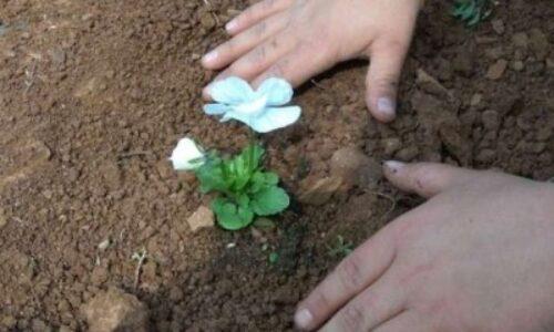 """Η """"Πρωτοβουλία για το Παιδί"""" διοργανώνει την ετήσια γιορτή εθελοντών της"""