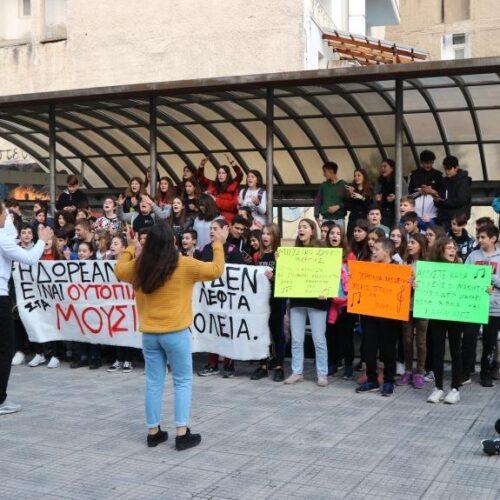 """Μαθητές Μουσικού Σχολείου Βέροιας: """"Σχολείο χωρίς βιβλία και καθηγητές είναι κιθάρα χωρίς χορδές"""" - Δυναμική κινητοποίηση"""