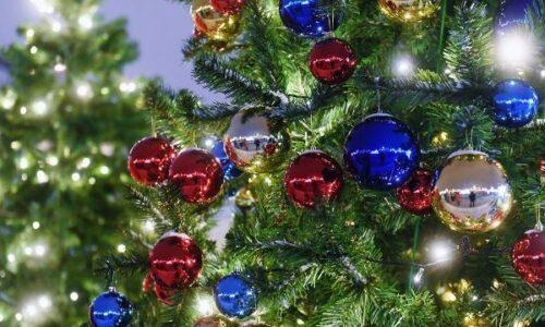 Χριστουγεννιάτικη γιορτή του Συλλόγου Καρκινοπαθών Βέροιας- Ημαθίας