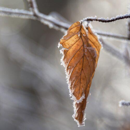 Δήμος Βέροιας: Οι θερμαινόμενοι χώροι - Γενικές οδηγίες για αναμενόμενες πολύ χαμηλές θερμοκρασίες