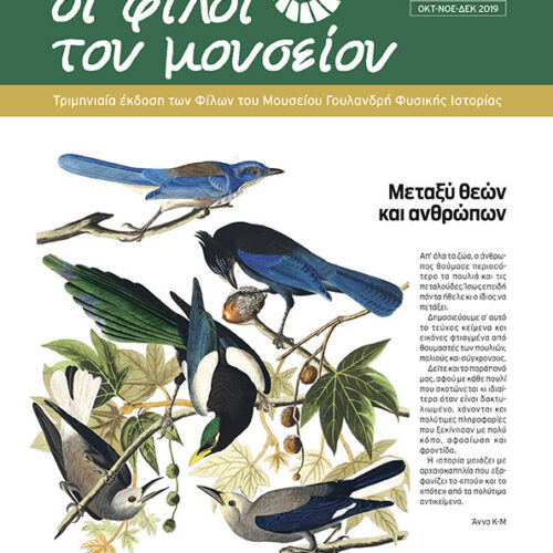 Αθήνα: Κυκλοφόρησε το νέο τεύχος των Φίλων του Μουσείου Γουλανδρή Φυσικής Ιστορίας