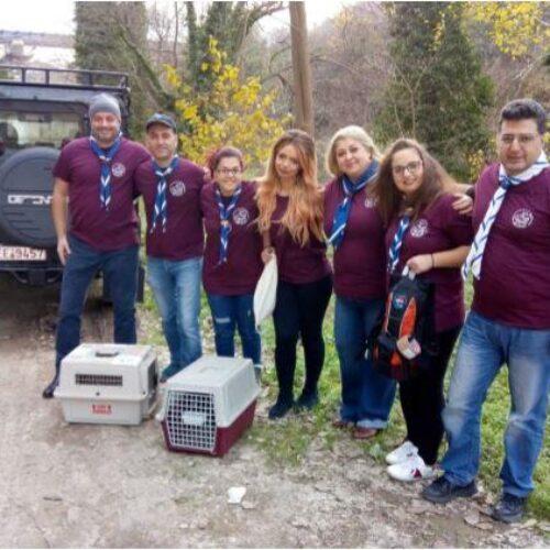 Ευχές για το Νέο Έτος από την Προσκοπική Ομάδα Διάσωσης Άγριας Ζωής του 3ου Συστήματος Προσκόπων Βέροιας