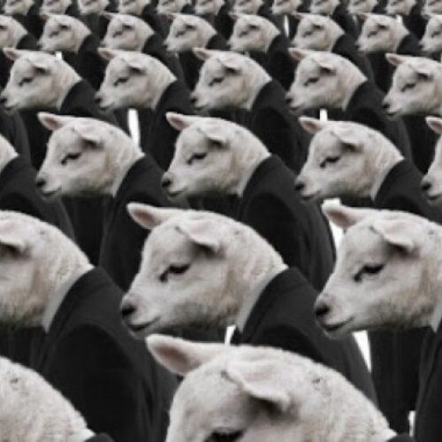 """""""Ο ηθικός βαρβαρισμός"""" γράφει ο Ηλίας Γιαννακόπουλος"""
