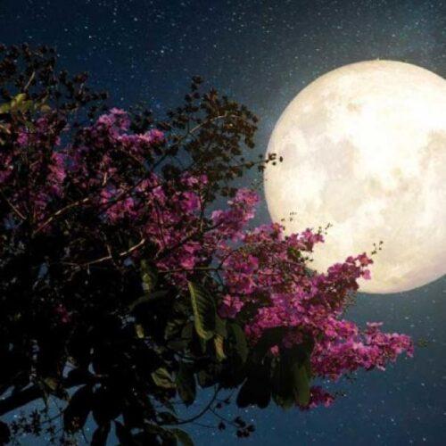Σήμερα η υπερπανσέληνος! Μεγαλύτερο και πιο φωτεινό το φεγγάρι