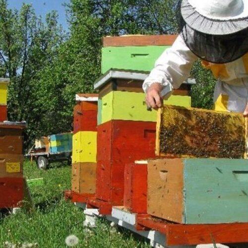 Πώς θα μετακινούνται οι αγρότες και οι μελισσοκόμοι – Αναλυτικές οδηγίες