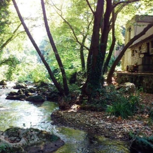 Βέροια: Κυριακάτικη βόλτα στον Τριπόταμο