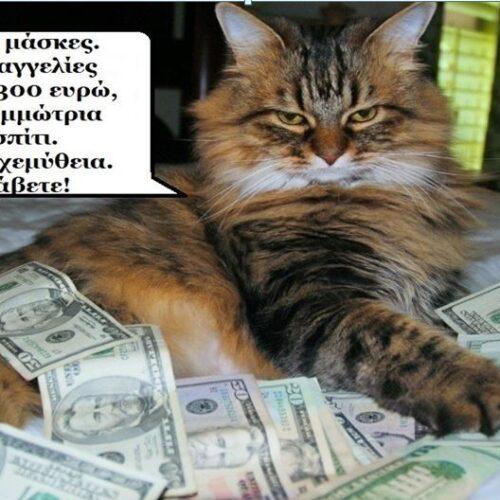 """Τα ζώα ομιλούν: """"Γάτος ο μαυραγορίτης"""" - Ελένη Βασιλείου"""