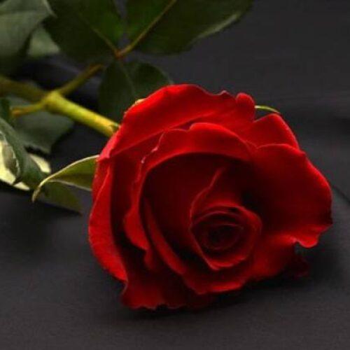 Συλλυπητήρια του Σωματείου ΤΕΒΕ - ΟΑΕΕ Βέροιας για τον θάνατο του Γιώργου Καραμανλίδη