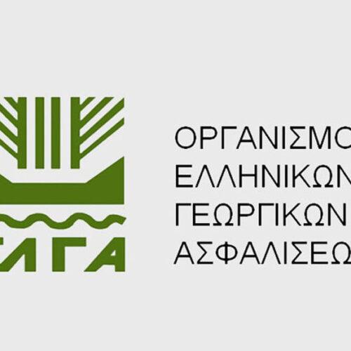 Οι προθεσμίες για ενστάσεις για την ζημιά από χαλάζι στις κοινότητες Μακροχωρίου και Διαβατού