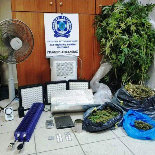 Συνελήφθη για υδροπονική καλλιέργεια δενδρυλλίων κάνναβης