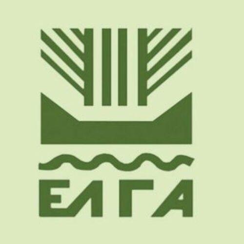 Αγροτικός Σύλλογος Βέροιας: Απογοήτευση για τους αγρότες της Ημαθίας από τις αποζημιώσεις του ΕΛΓΑ