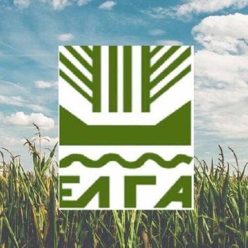 """Αγροτικός Σύλλογος Βέροιας: """"Ζητούμε άμεσα από τον ΕΛΓΑ να προβεί σε αναγγελίεςγια την κάλυψη της ακαρπίας"""""""