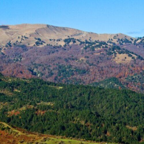 Αιολικά στον Ορεινό Όγκο των Γρεβενών, στο Εθνικό Πάρκο της Β. Πίνδου: Αύριο θα είναι αργά. Στο μέλλον, δεν θα υπάρχει μέλλον.