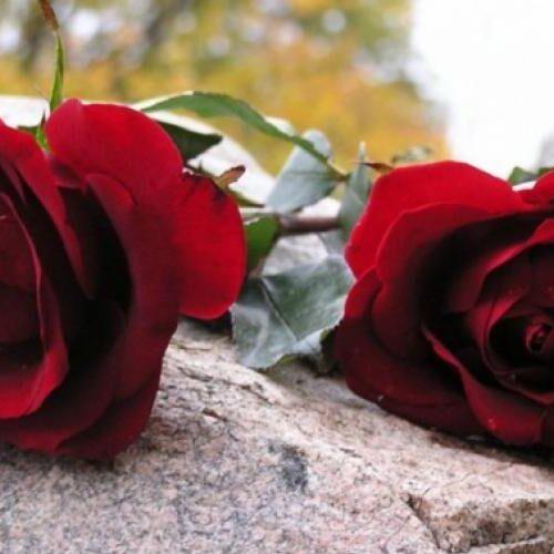 Συλλυπητήριο της Φιλοπτώχου Αδελφότητος Κυριών Βέροιας για τον Κώστα Μπραβάκη