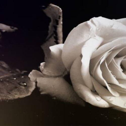"""Συλλυπητήριο της """"Πρωτοβουλίας για το Παιδί"""" για τον θάνατο του Κώστα Μπραβάκη"""
