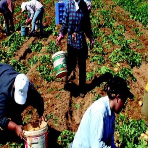 Ενημέρωση για τα ζητήματα των εργατών γης από τον Τάσο Μπαρτζώκα