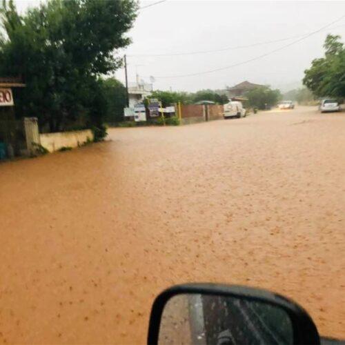 """""""Το νερό που ρέει…"""" γράφει ο Νότης Μαυρουδής"""