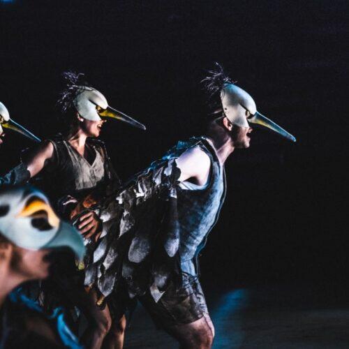 ΚΘΒΕ: Οι «Όρνιθες» στο Αρχαίο Θέατρο Φιλίππων, Σάββατο 29 Αυγούστου