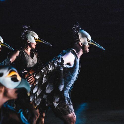 ΚΘΒΕ: Ακυρώνεται η παράσταση «Όρνιθες» στο Υπαίθριο Θέατρο Δήμου Κοζάνης