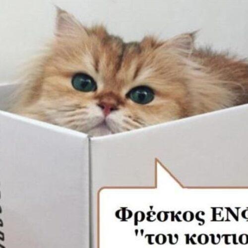 """Τα ζώα ομιλούν: """"Το... κουστούμι του ΕΝΦΙΑ"""" - Ελένη Βασιλείου"""