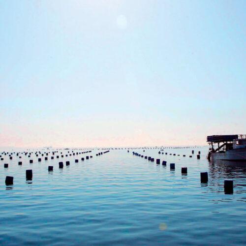 Π.Ε. Ημαθίας: Προσωρινή παύση των αλιευτικών δραστηριοτήτων ως συνέπεια της επιδημικής έκρηξης της Covid-19