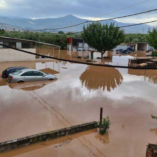 Δήμος Νάουσας: Συγκέντρωση ειδών πρώτης ανάγκης για τους πληγέντες της Καρδίτσας