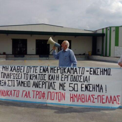 """Συνδικάτο Γάλακτος Ημαθίας - Πέλλας: """"Στην πύλη του εργοστασίου «Κρόνος» μετά τη δεκαήμερη αναστολή λειτουργίας"""""""