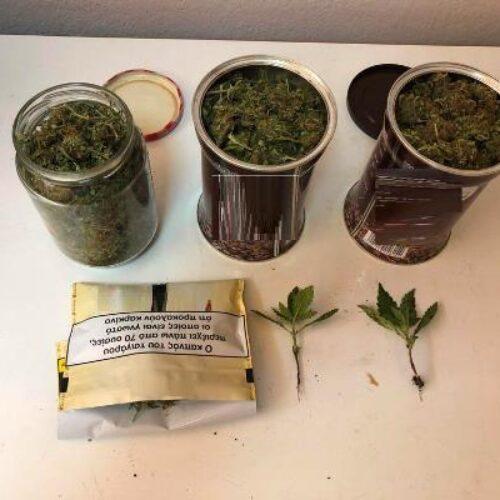 Πέλλα: Σύλληψη για ναρκωτικά