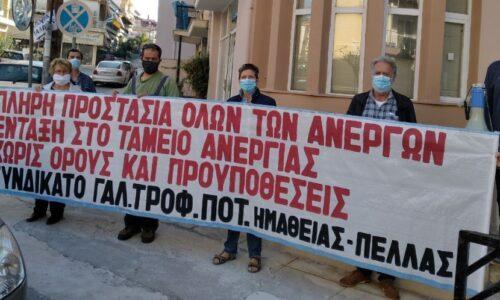 Συνδικάτο Γάλακτος Ημαθίας - Πέλλας: Απεργούμε την Πέμπτη 26 Νοέμβρη - Υπερασπιζόμαστε τη ζωή και τα δικαιώματά μας