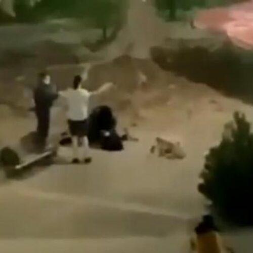 Βίαιη σύλληψη νεαρής κοπέλας σε πάρκο στην Καρδίτσα (video)