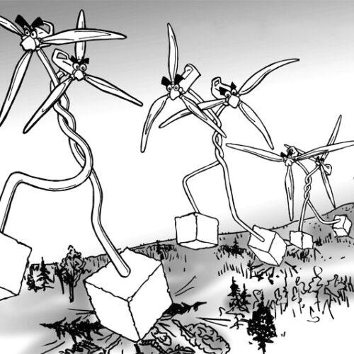 """Σώστε το Βέρμιο: """"Να αντιδράσουμε ενωμένοι στα σχέδιά τους για εγκατάσταση και άλλων ανεμογεννητριών  στο Βουνό"""""""