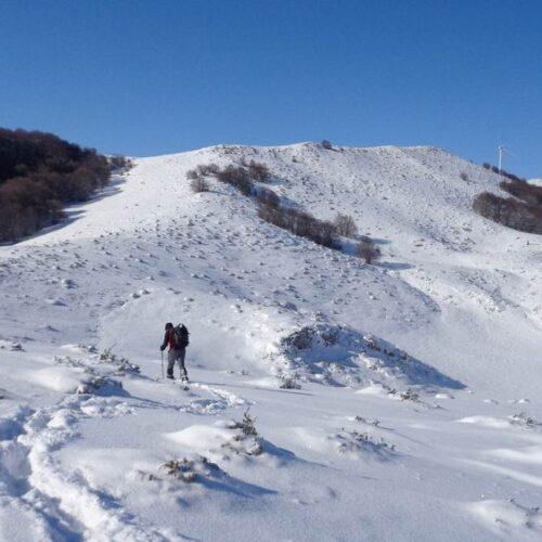"""Βέρμιο - Ορειβατική ομάδα Βέροιας """"Τοτός"""": Περπατώντας δίπλα σε ίχνη λύκων"""