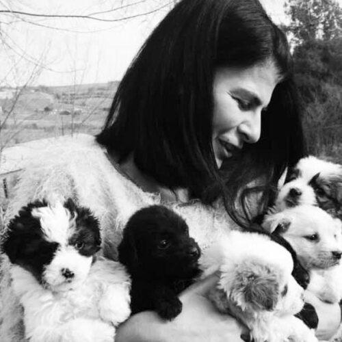 Αφιέρωμα στο Never Wal Alone. Μαρίκα Καμάρη. Μια γυναίκα φύλακας άγγελος για χιλιάδες αδέσποτα σε όλη την Ελλάδα