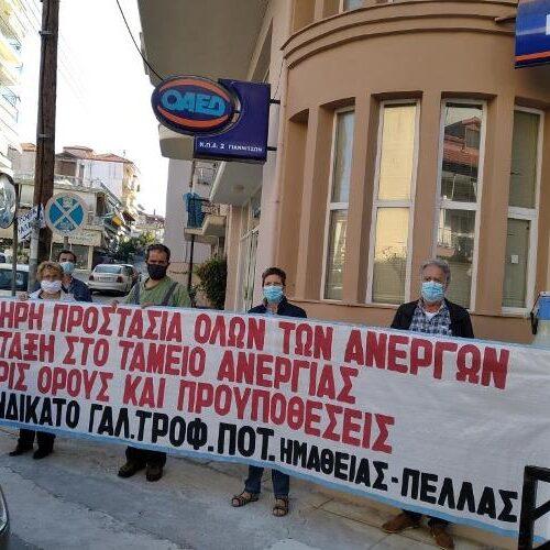 Συνδικάτο Γάλακτος Ημαθίας - Πέλλας: Ένταξη στο ταμείο ανεργίας χωρίς όρους και προϋποθέσεις