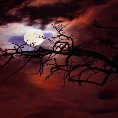 """Νυχτερινός απόπλους: """"Δεν κλαίω"""" - Γιάννης Ρίτσος, Μάριος Τόκας, Αντώνης Καλογιάννης"""