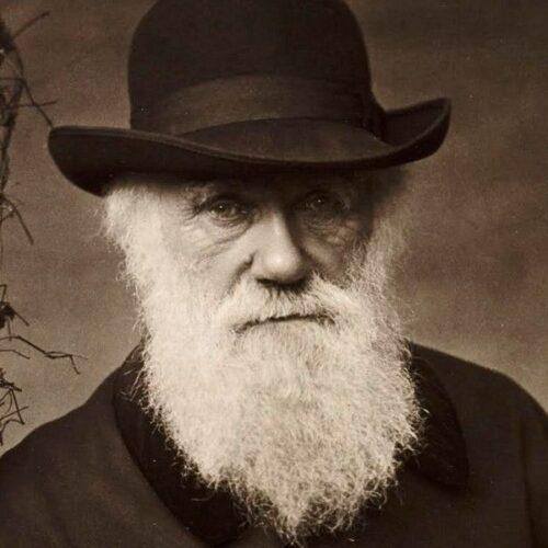 Η Πανελλήνια Ένωση Βιοεπιστημόνων για την επέτειο γέννησης του Δαρβίνου