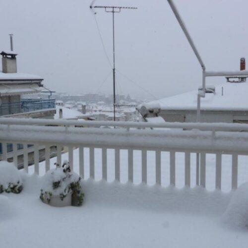 Εξακολουθεί να χιονίζει στη Βέροια - Ολικός παγετός για τρεις μέρες
