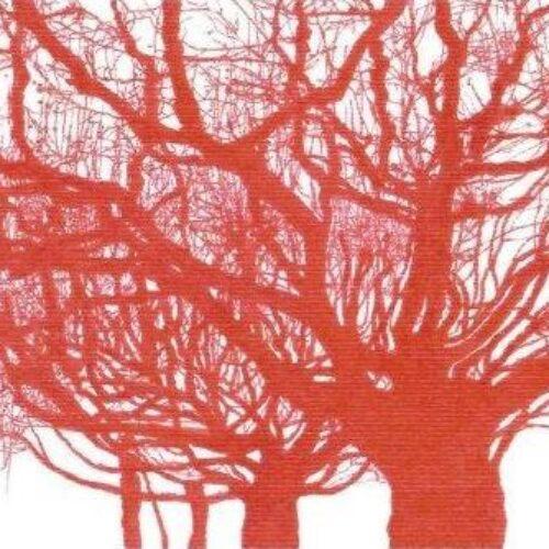 """Νέα κυκλοφορία βιβλίου: Ελένη Μουσαμά """"το Όνομα και η Μορφή"""" από τις εκδόσεις Φίλντισι"""