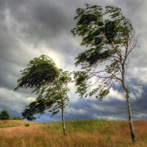 """Γιάννης Ρίτσος """"Είναι μεγάλος τούτος ο άνεμος"""""""
